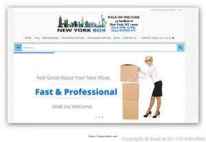 Professional-Web-Design-Services-Ecommerce-Website-Designers.